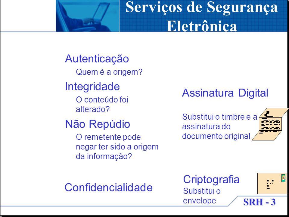 Serviços de Segurança Eletrônica
