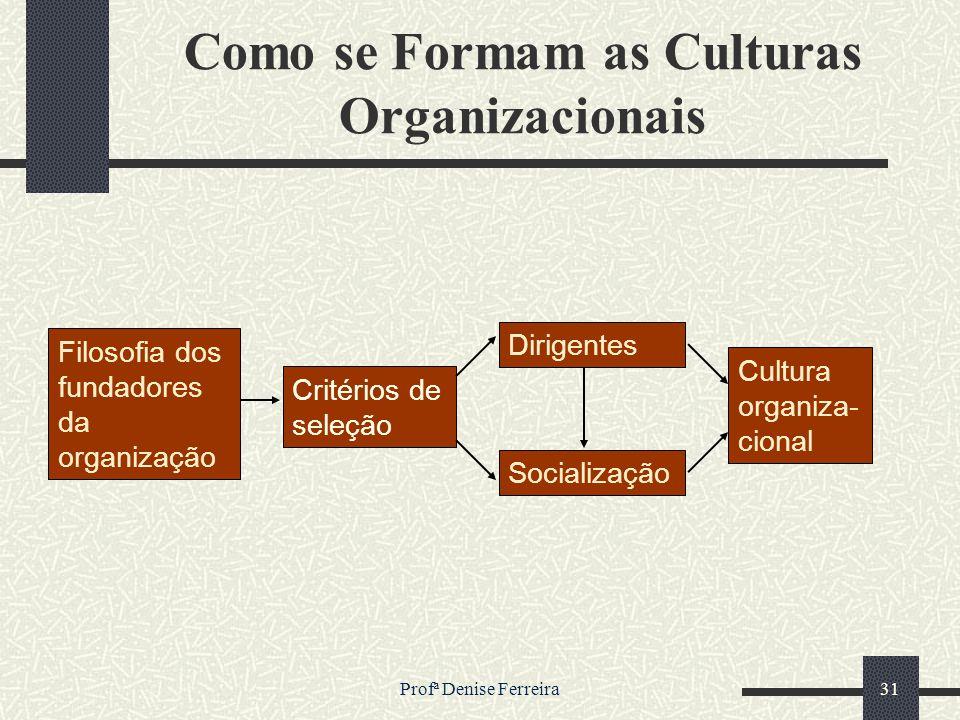 Como se Formam as Culturas Organizacionais