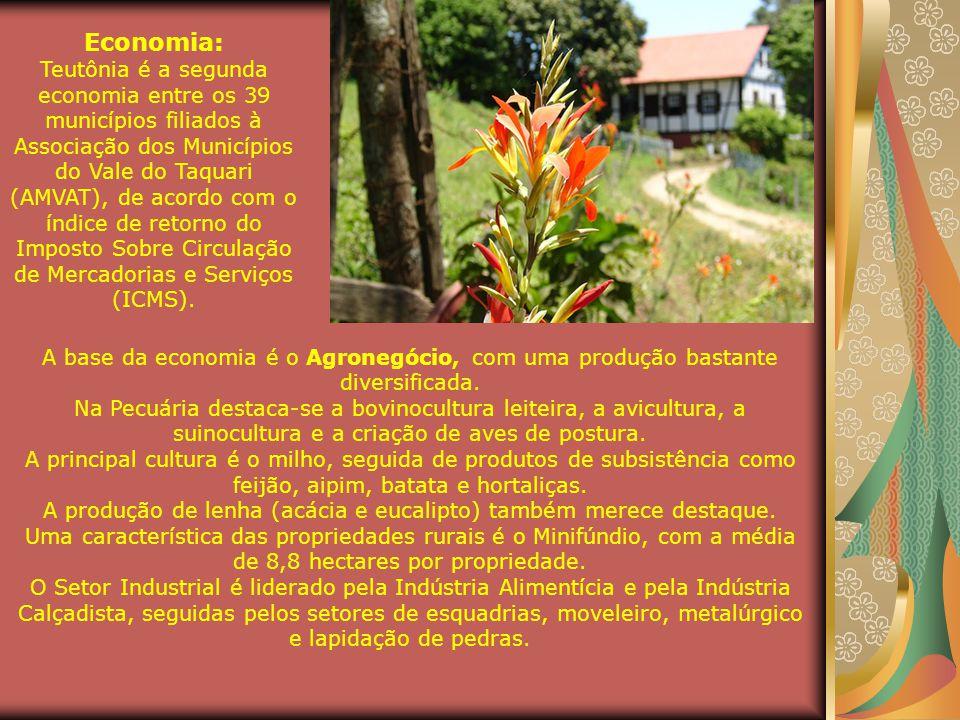 A produção de lenha (acácia e eucalipto) também merece destaque.