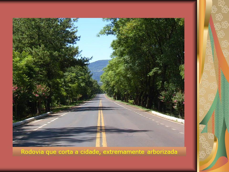 Rodovia que corta a cidade, extremamente arborizada