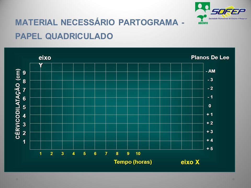 MATERIAL NECESSÁRIO PARTOGRAMA - PAPEL QUADRICULADO
