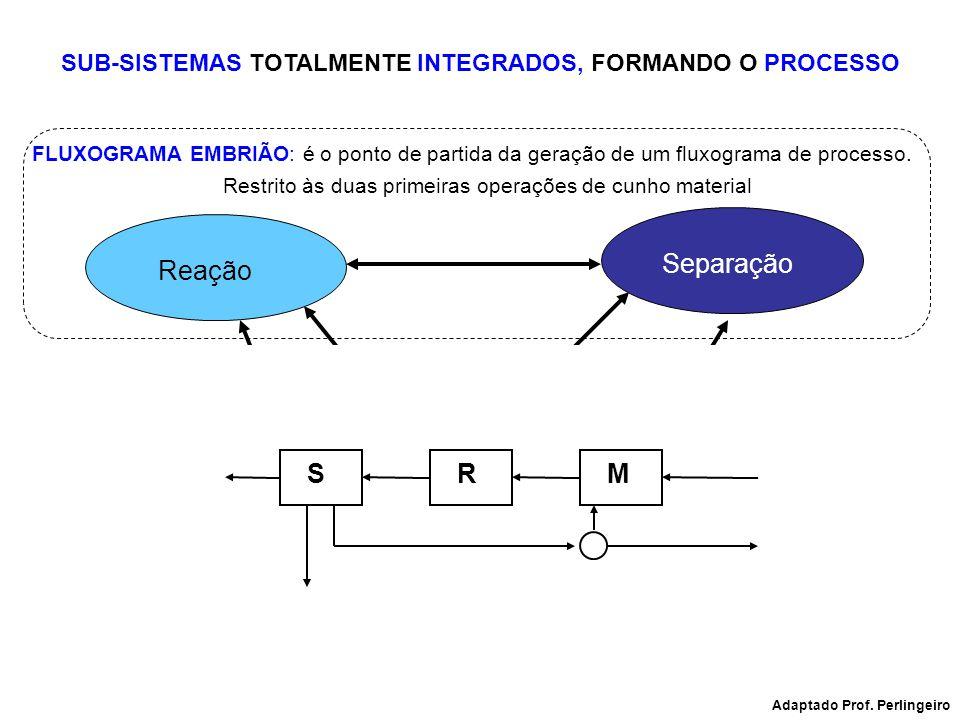 SUB-SISTEMAS TOTALMENTE INTEGRADOS, FORMANDO O PROCESSO