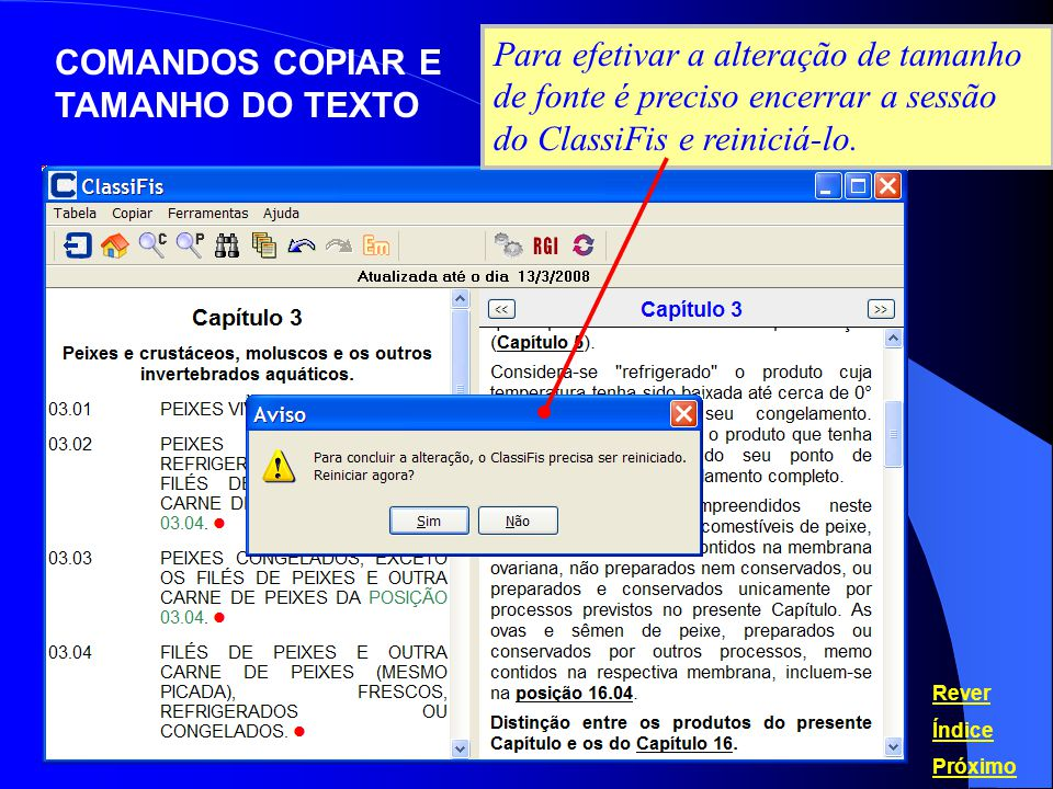 COMANDOS COPIAR E TAMANHO DO TEXTO