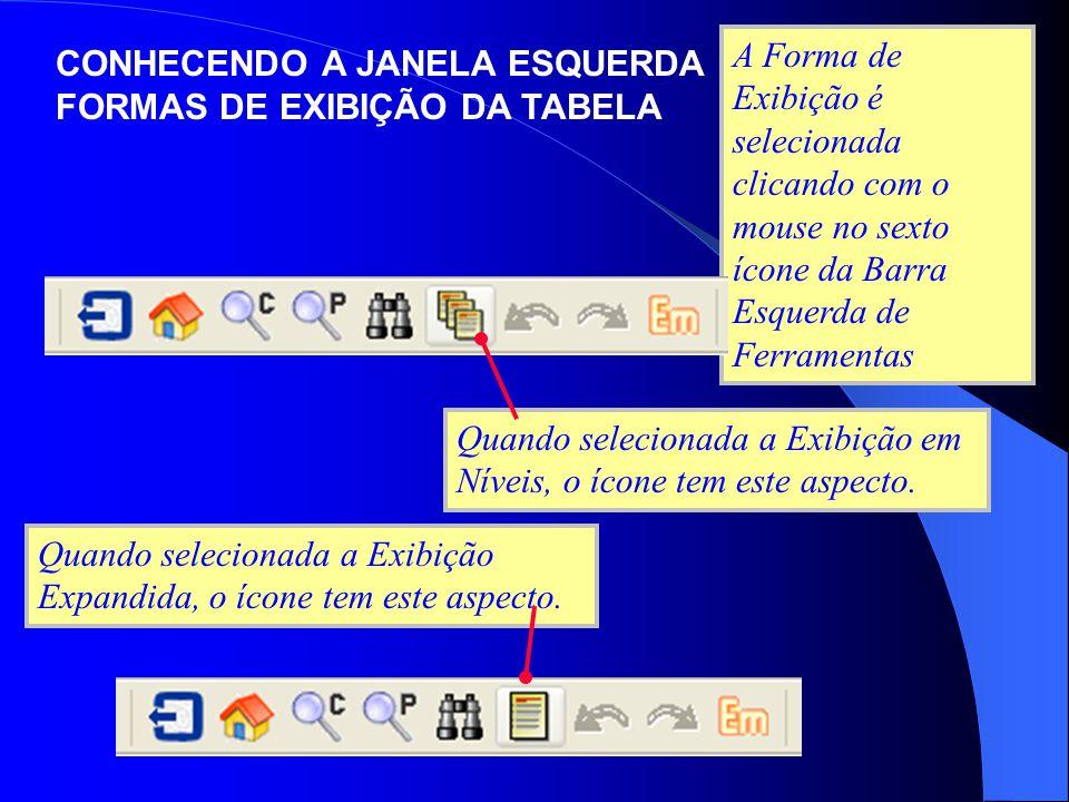 A Forma de Exibição é selecionada clicando com o mouse no sexto ícone da Barra Esquerda de Ferramentas