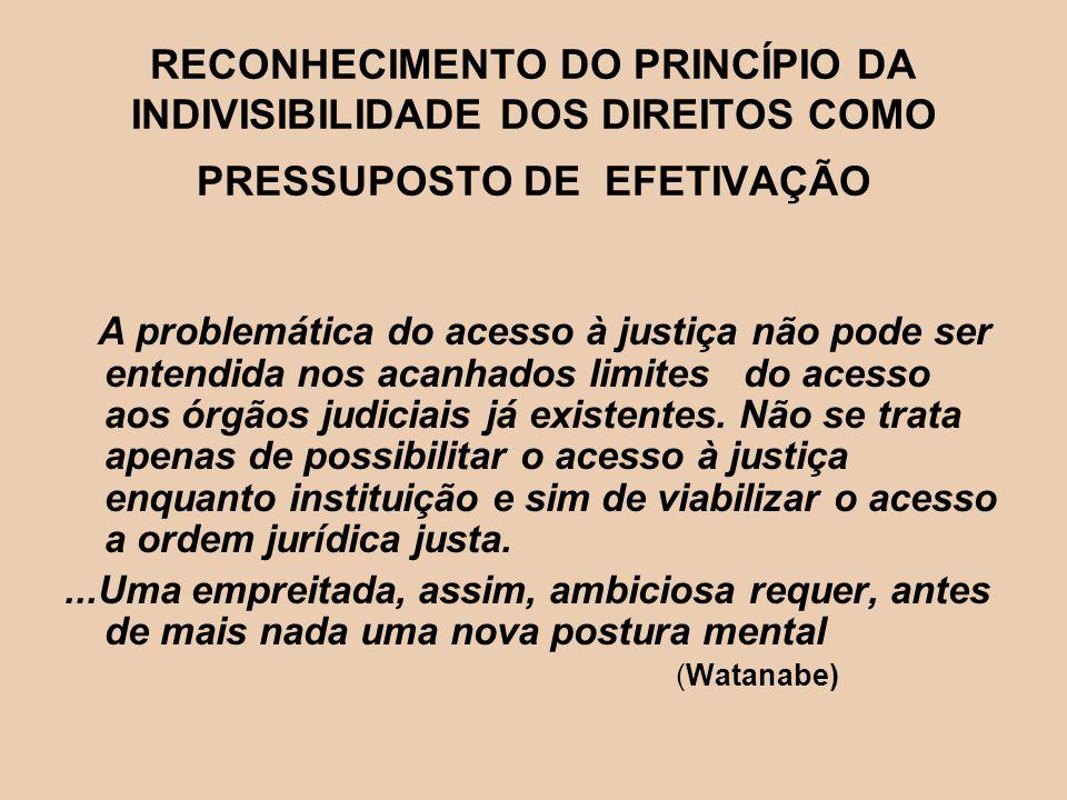 RECONHECIMENTO DO PRINCÍPIO DA INDIVISIBILIDADE DOS DIREITOS COMO PRESSUPOSTO DE EFETIVAÇÃO