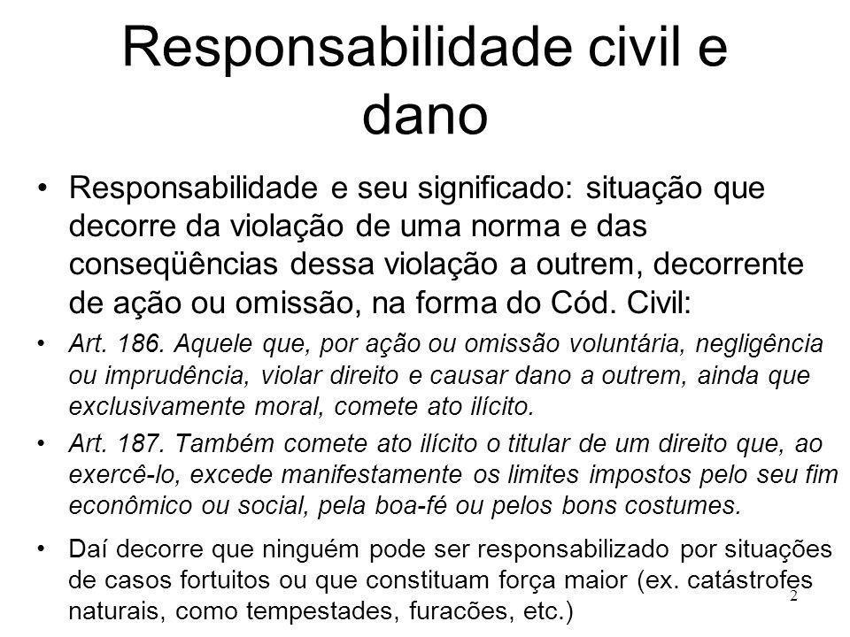 Responsabilidade civil e dano