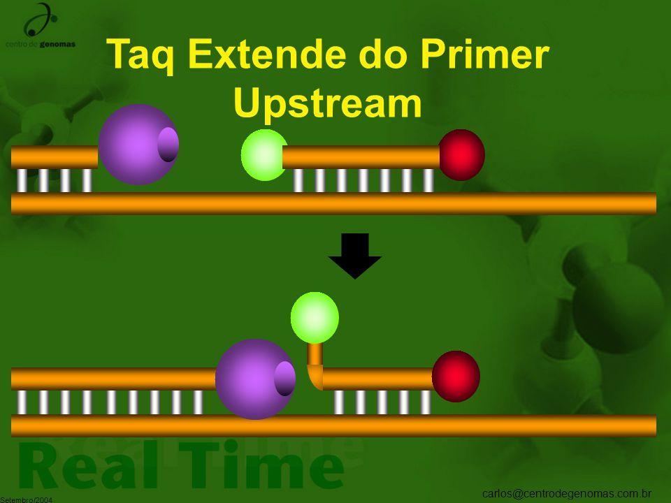 Taq Extende do Primer Upstream