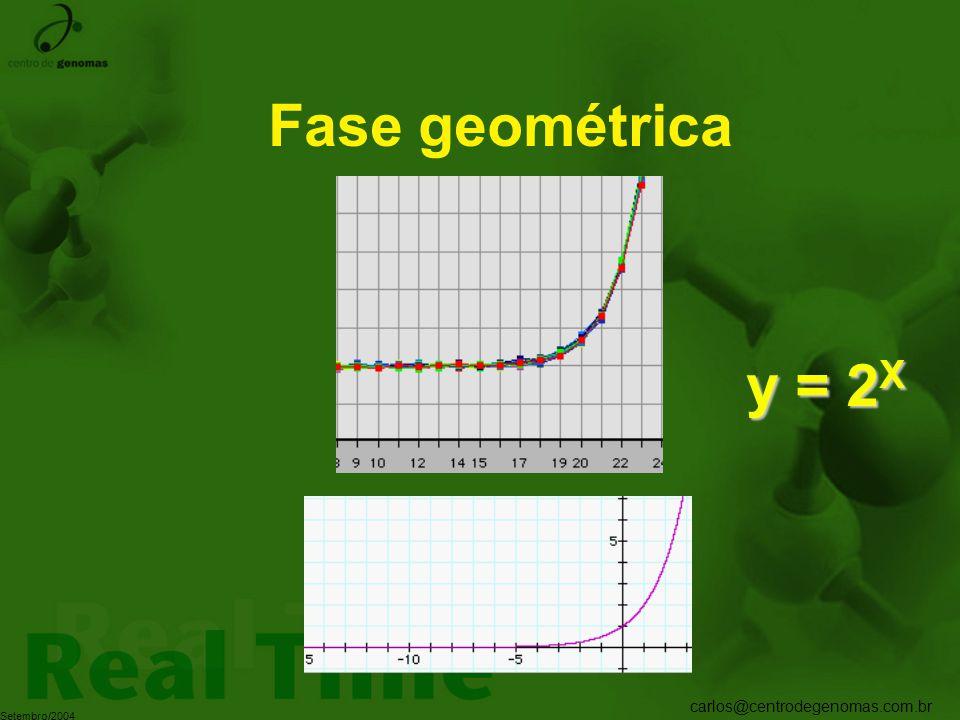 Fase geométrica y = 2X