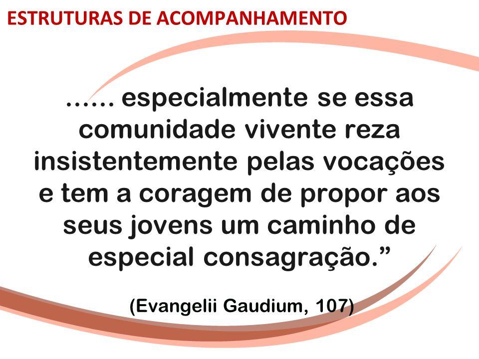 ESTRUTURAS DE ACOMPANHAMENTO