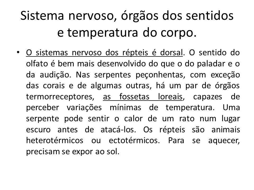 Sistema nervoso, órgãos dos sentidos e temperatura do corpo.