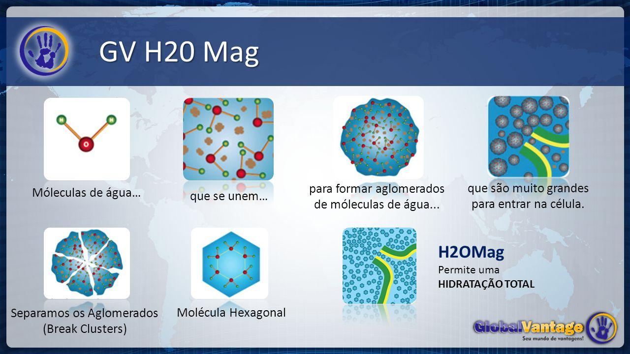 GV H20 Mag H2OMag Permite uma HIDRATAÇÃO TOTAL