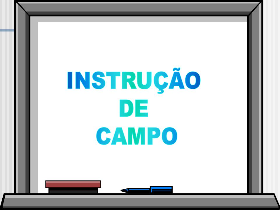 INSTRUÇÃO DE CAMPO