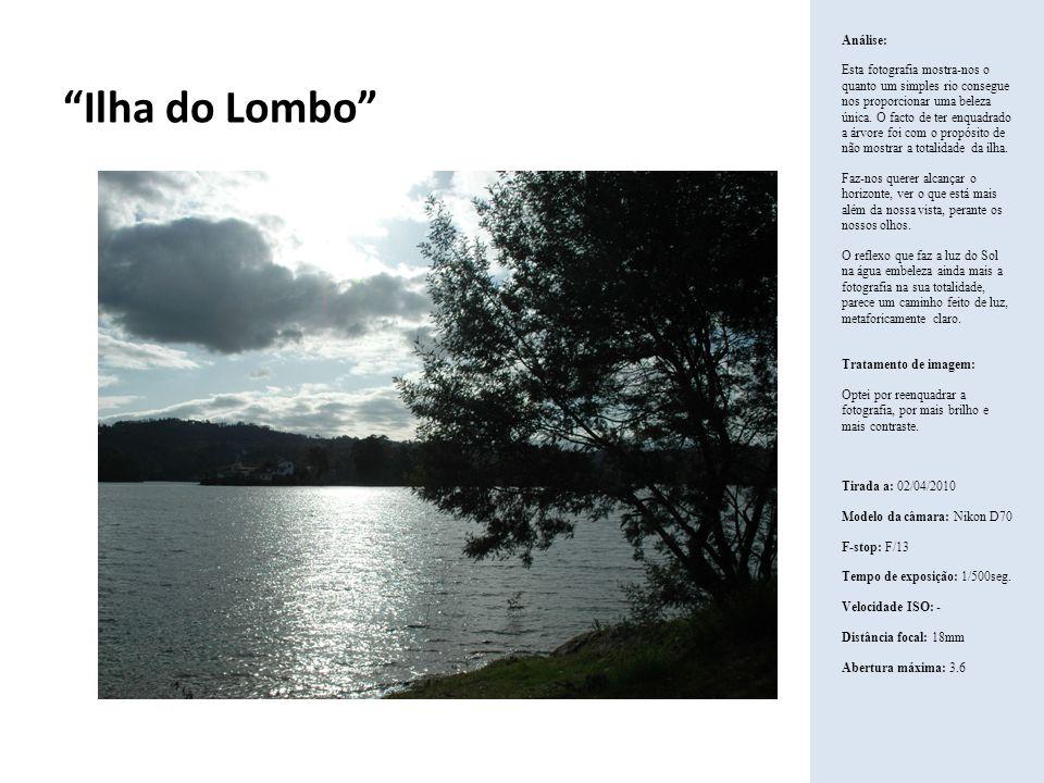 Ilha do Lombo Análise:
