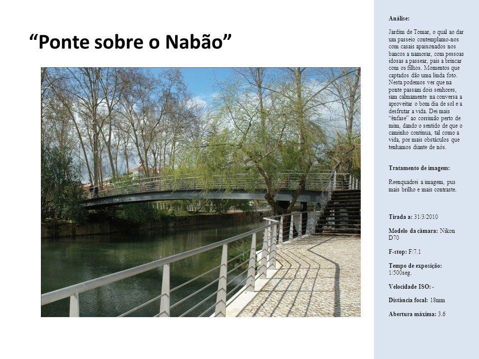 Ponte sobre o Nabão Análise: