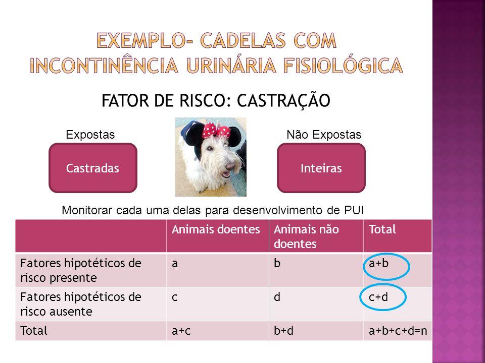 Exemplo- Cadelas com incontinência urinária fisiológica