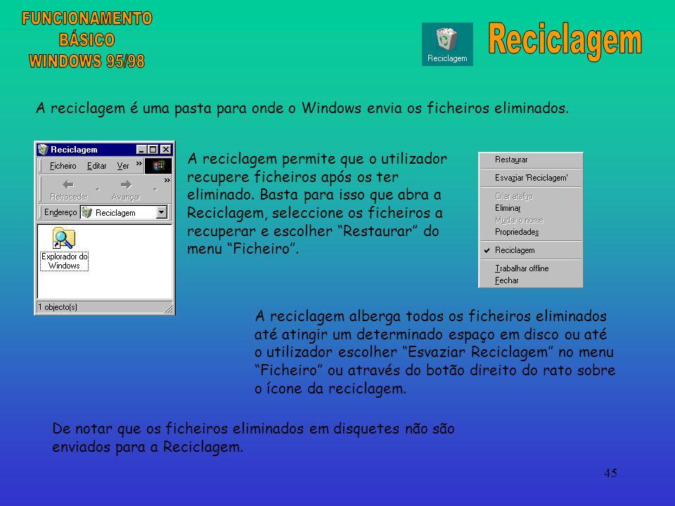 FUNCIONAMENTO Reciclagem BÁSICO WINDOWS 95/98