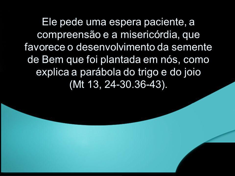 Ele pede uma espera paciente, a compreensão e a misericórdia, que favorece o desenvolvimento da semente de Bem que foi plantada em nós, como explica a parábola do trigo e do joio