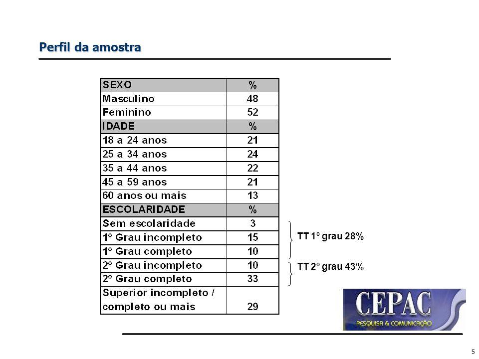 Perfil da amostra TT 1º grau 28% TT 2º grau 43%