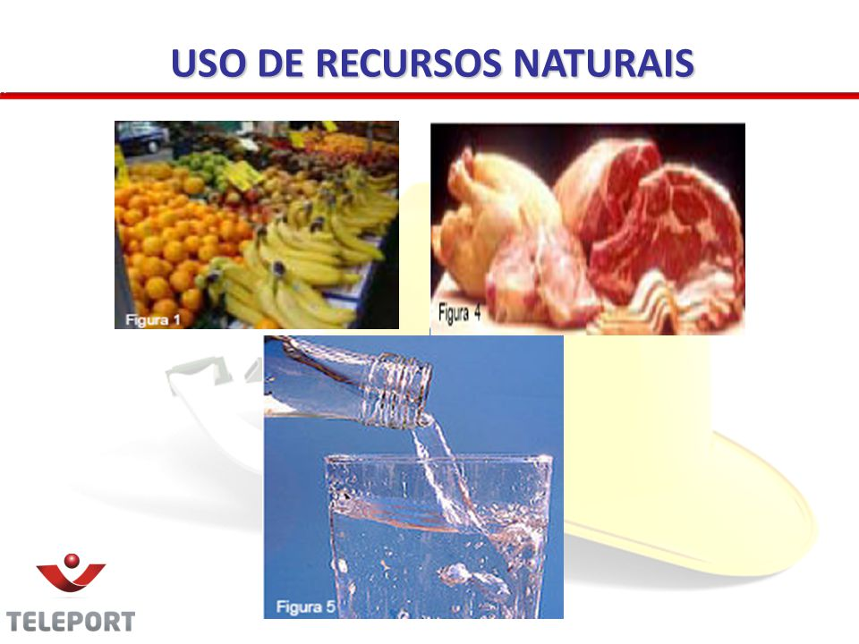 USO DE RECURSOS NATURAIS