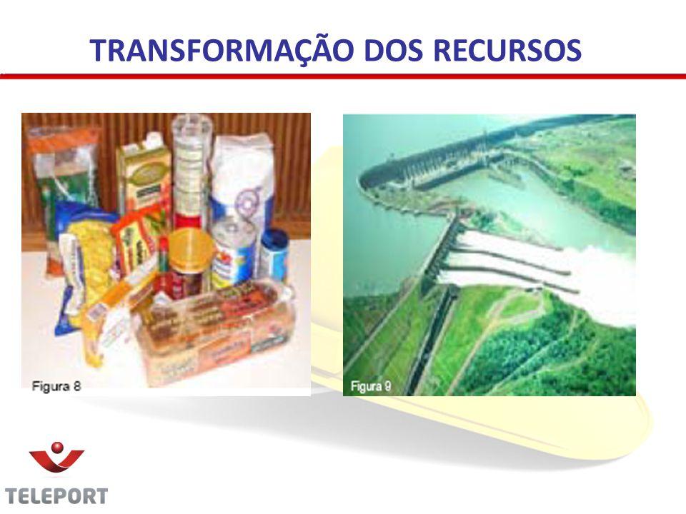 TRANSFORMAÇÃO DOS RECURSOS