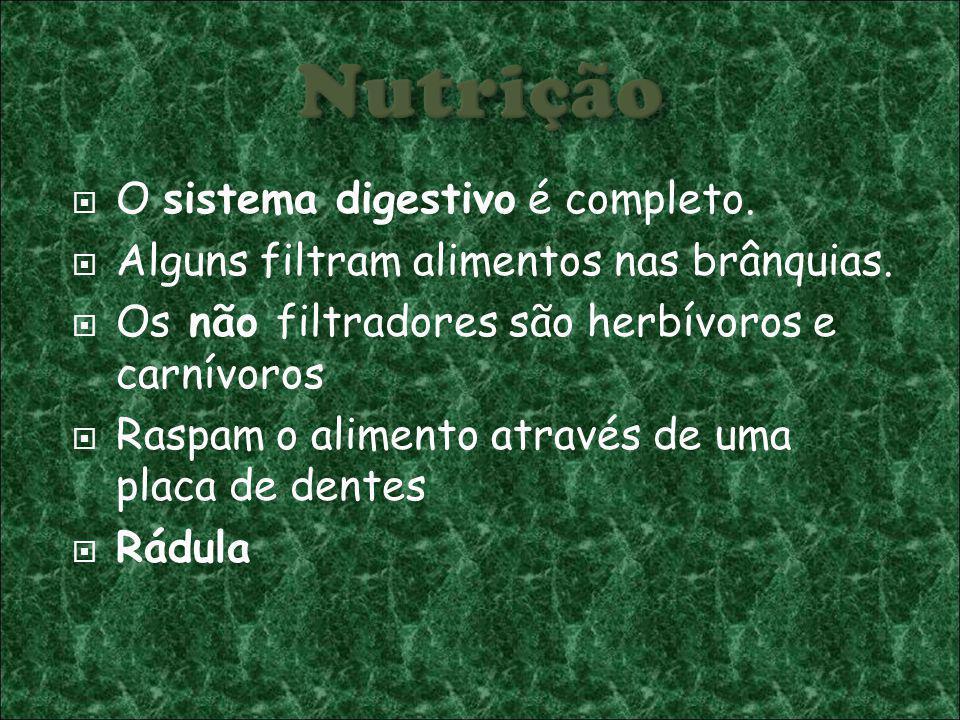Nutrição O sistema digestivo é completo.