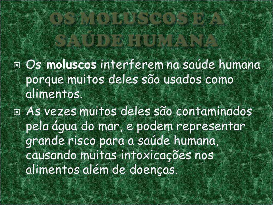 OS MOLUSCOS E A SAÚDE HUMANA