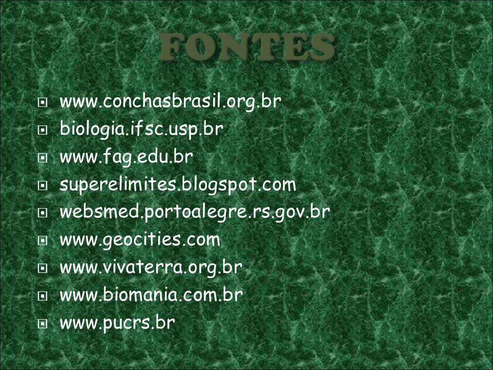 FONTES www.conchasbrasil.org.br biologia.ifsc.usp.br www.fag.edu.br