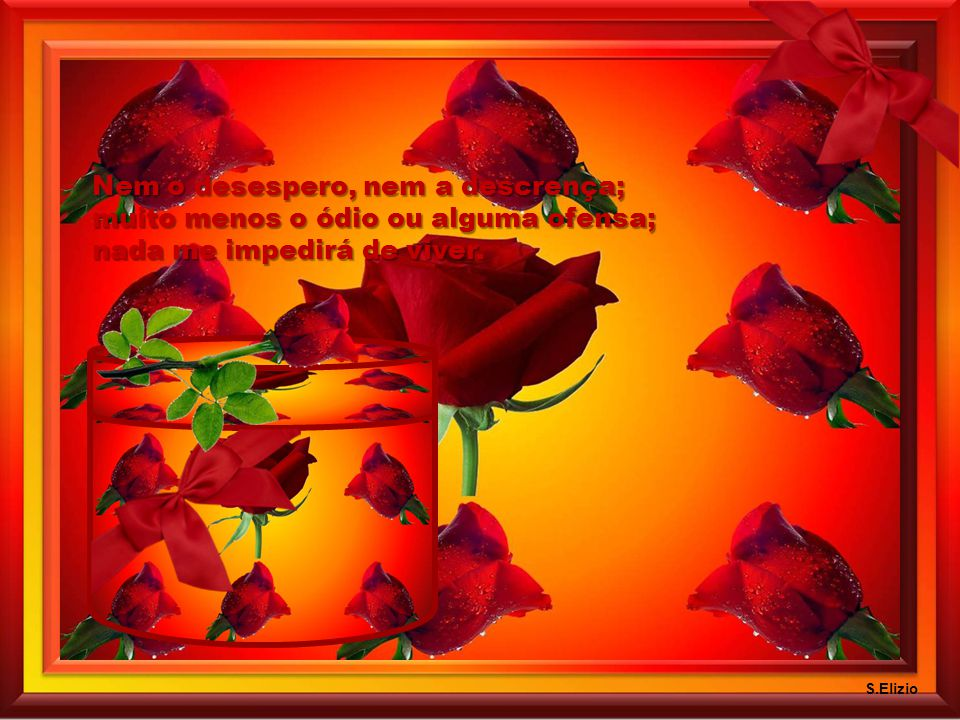 Nem o desespero, nem a descrença; muito menos o ódio ou alguma ofensa; nada me impedirá de viver.