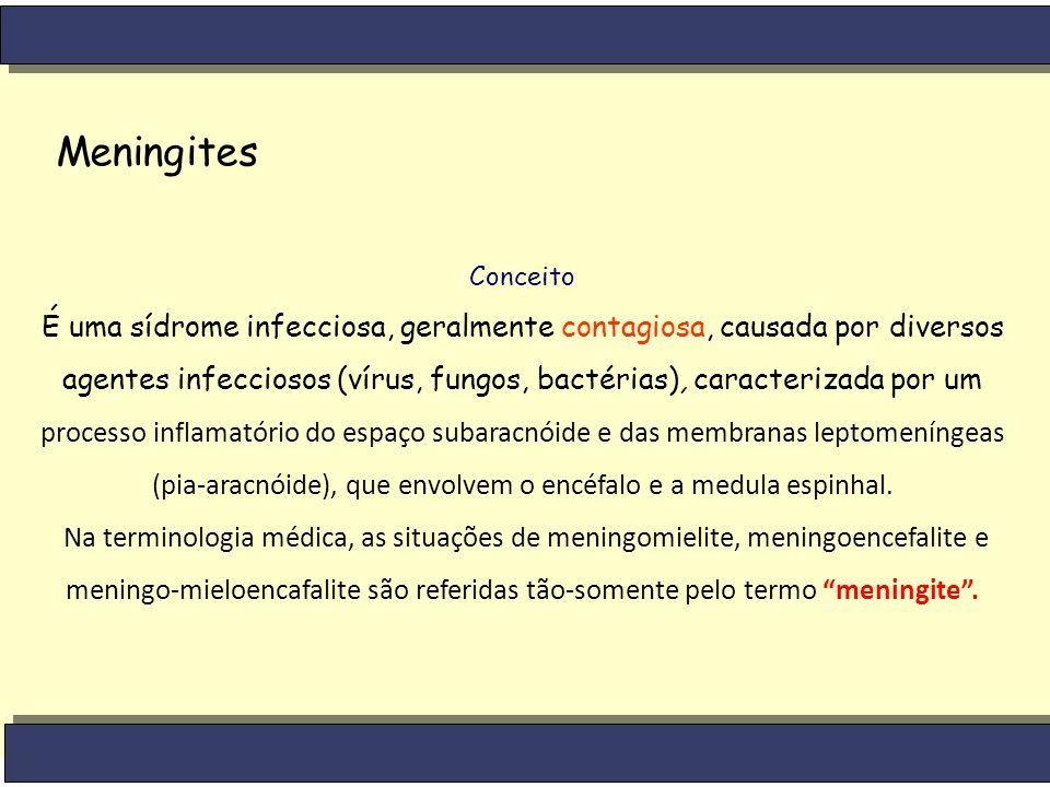 Meningites Conceito.