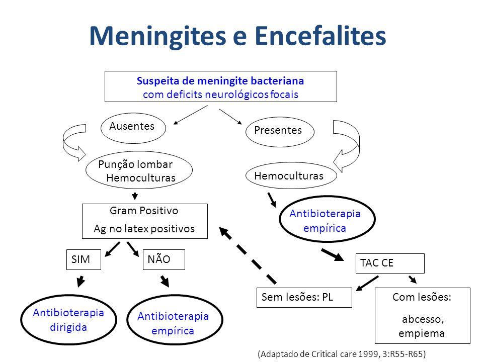 Meningites e Encefalites