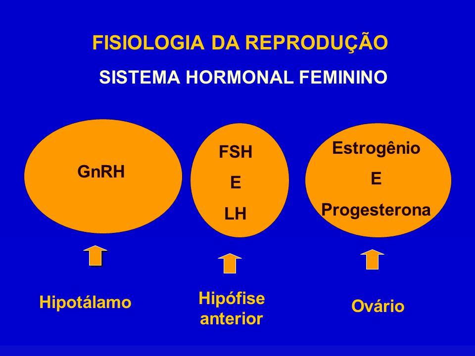 SISTEMA HORMONAL FEMININO