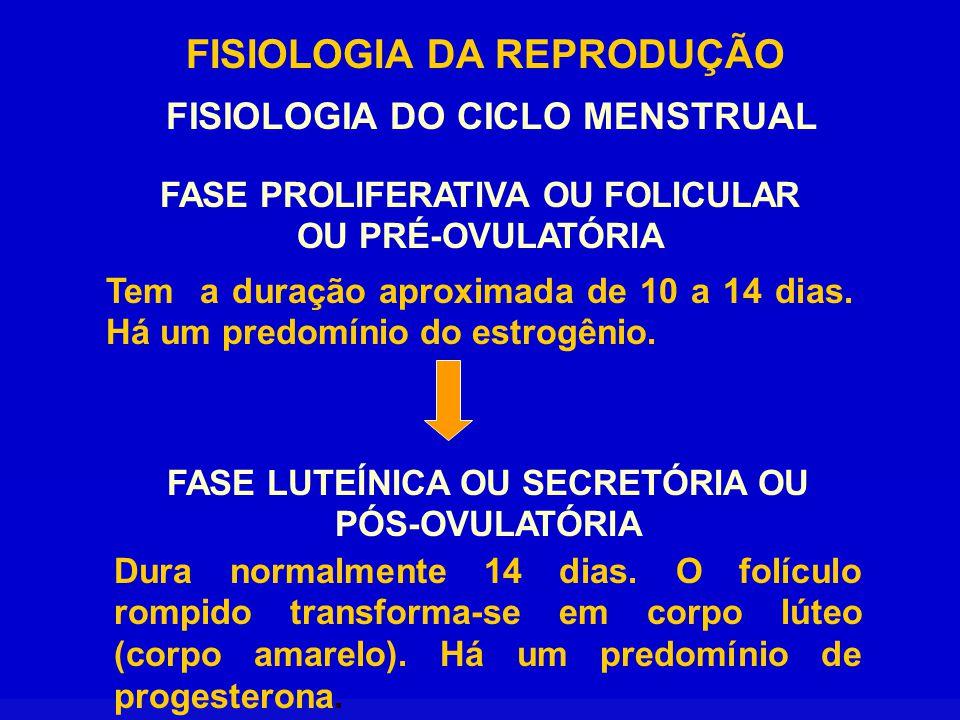 FISIOLOGIA DA REPRODUÇÃO