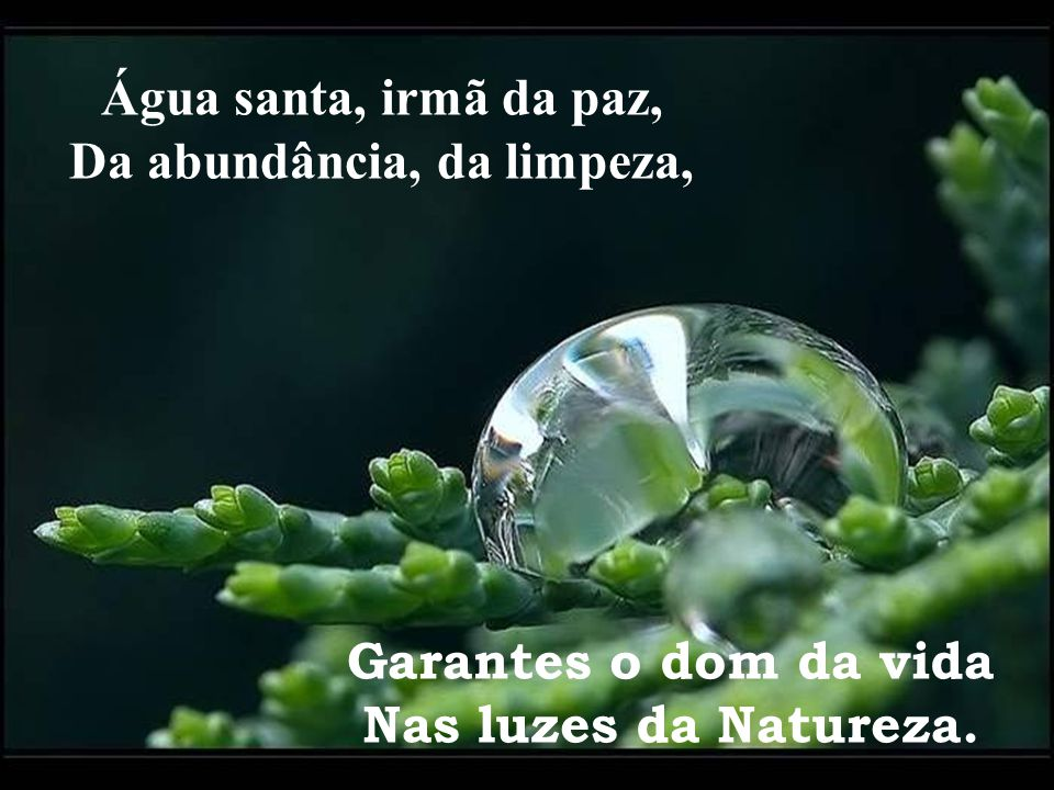 Água santa, irmã da paz, Da abundância, da limpeza,