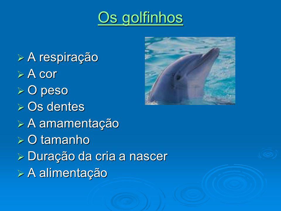 Os golfinhos A respiração A cor O peso Os dentes A amamentação