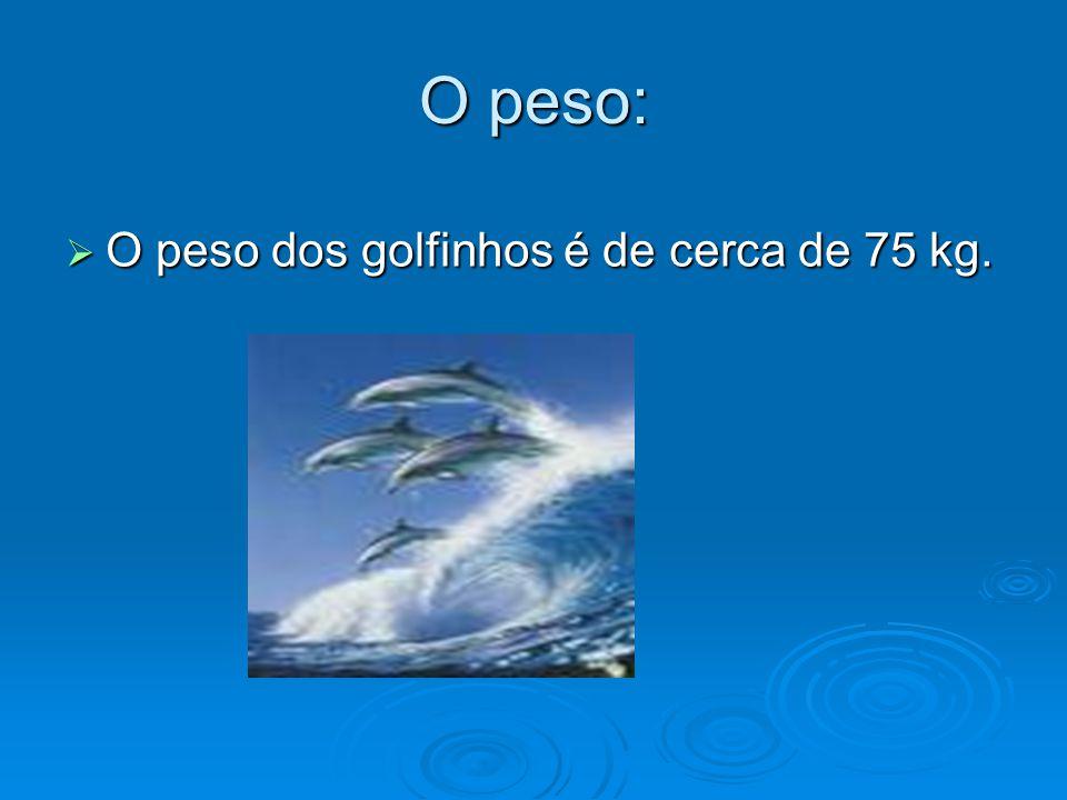 O peso: O peso dos golfinhos é de cerca de 75 kg.