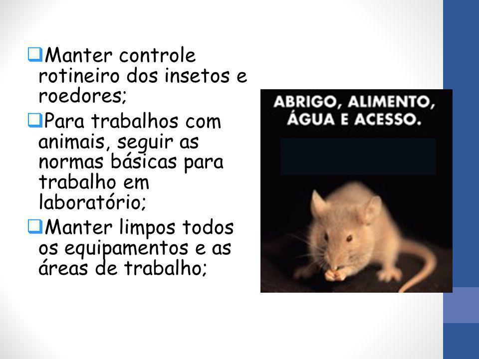 Manter controle rotineiro dos insetos e roedores;