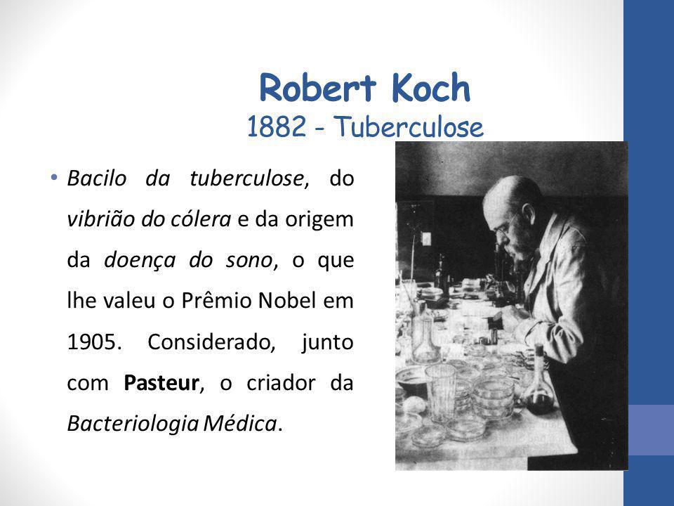 Robert Koch 1882 - Tuberculose