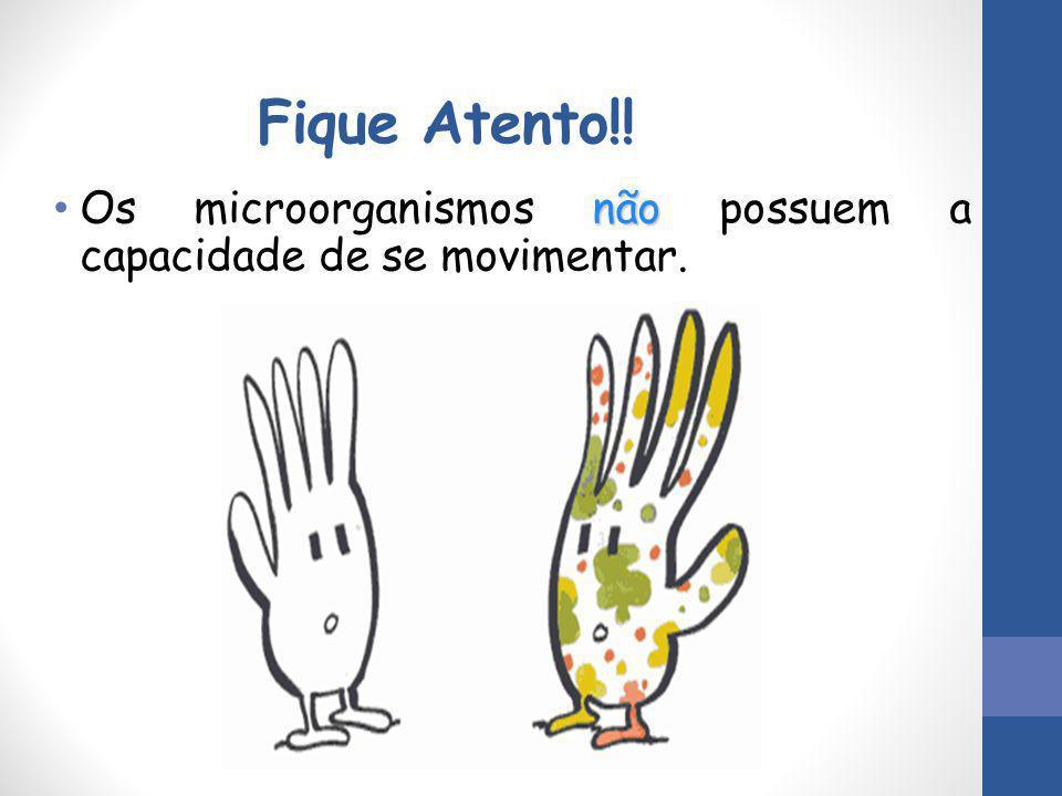 Fique Atento!! Os microorganismos não possuem a capacidade de se movimentar.