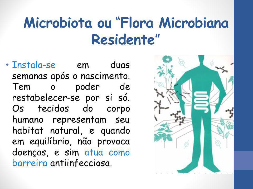 Microbiota ou Flora Microbiana Residente