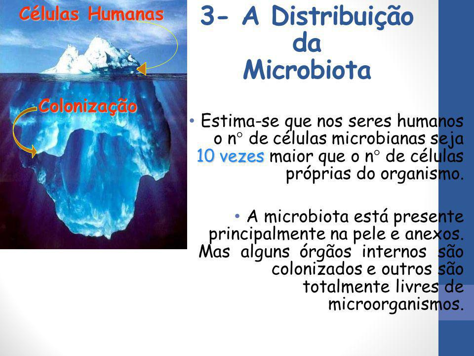 3- A Distribuição da Microbiota