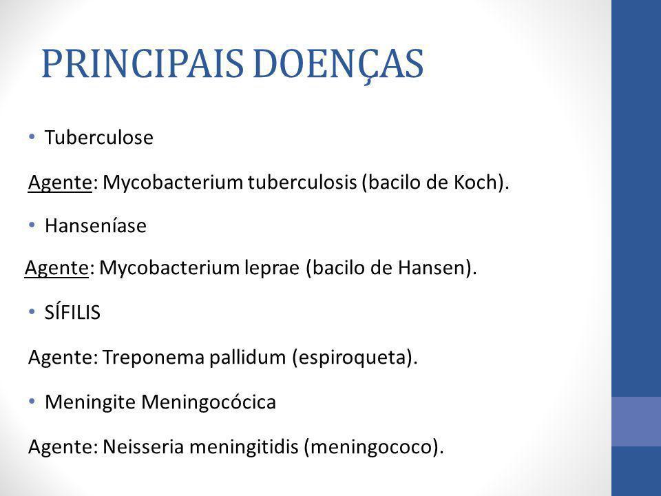 PRINCIPAIS DOENÇAS Tuberculose
