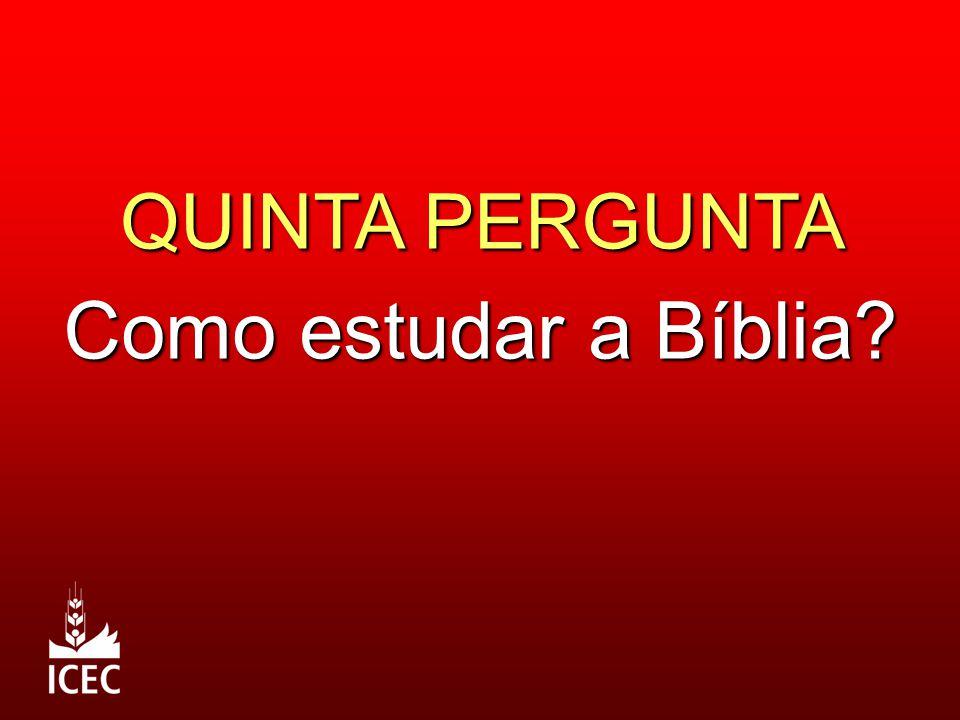 QUINTA PERGUNTA Como estudar a Bíblia