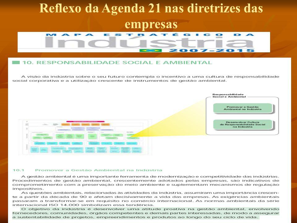Reflexo da Agenda 21 nas diretrizes das empresas