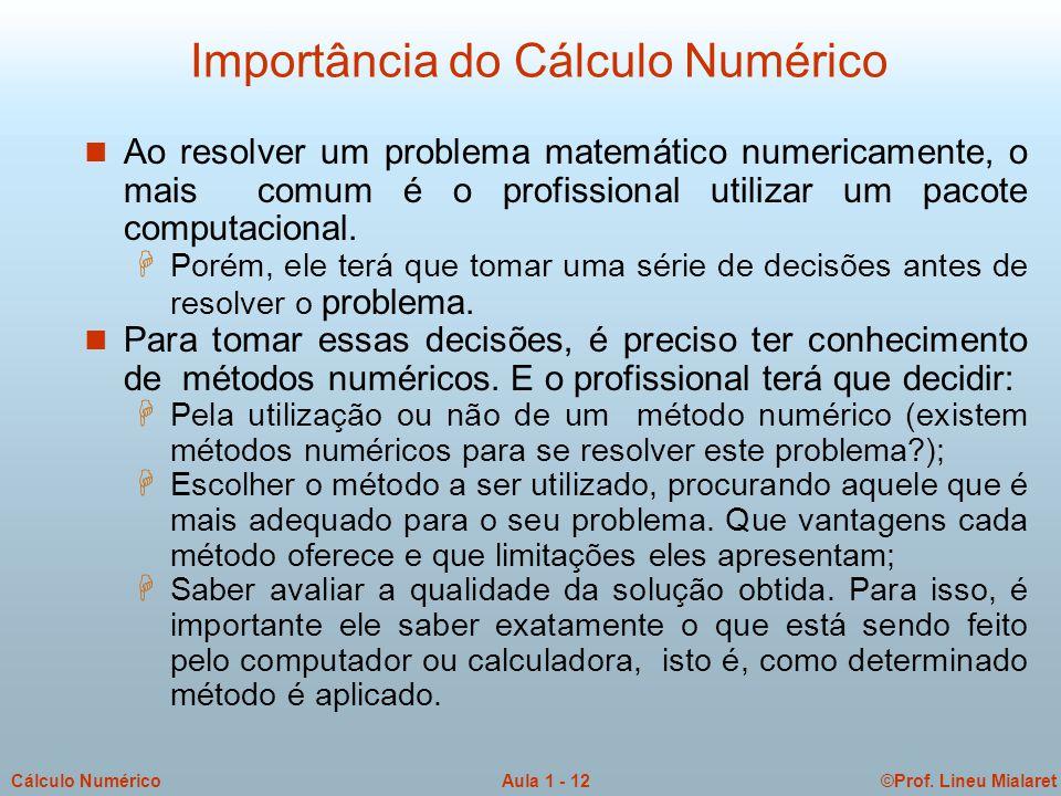 Importância do Cálculo Numérico