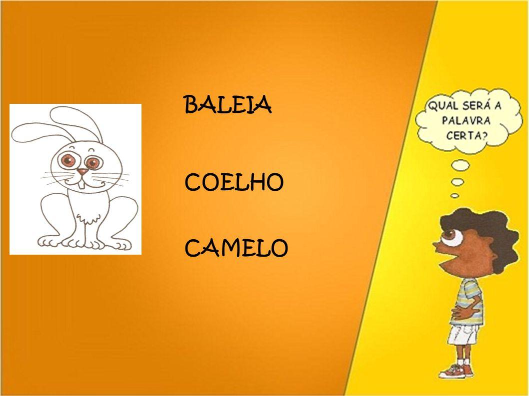 BALEIA COELHO CAMELO 37