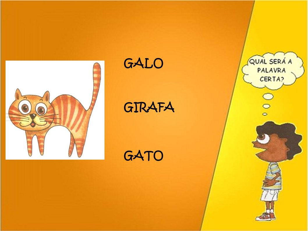 GALO GIRAFA GATO 39