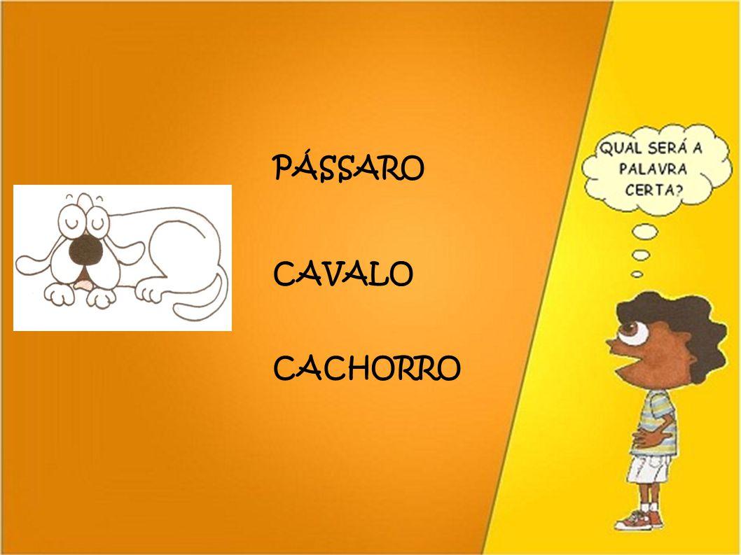 PÁSSARO CAVALO CACHORRO 41