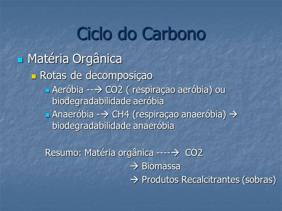 Ciclo do Carbono Matéria Orgânica Rotas de decomposiçao
