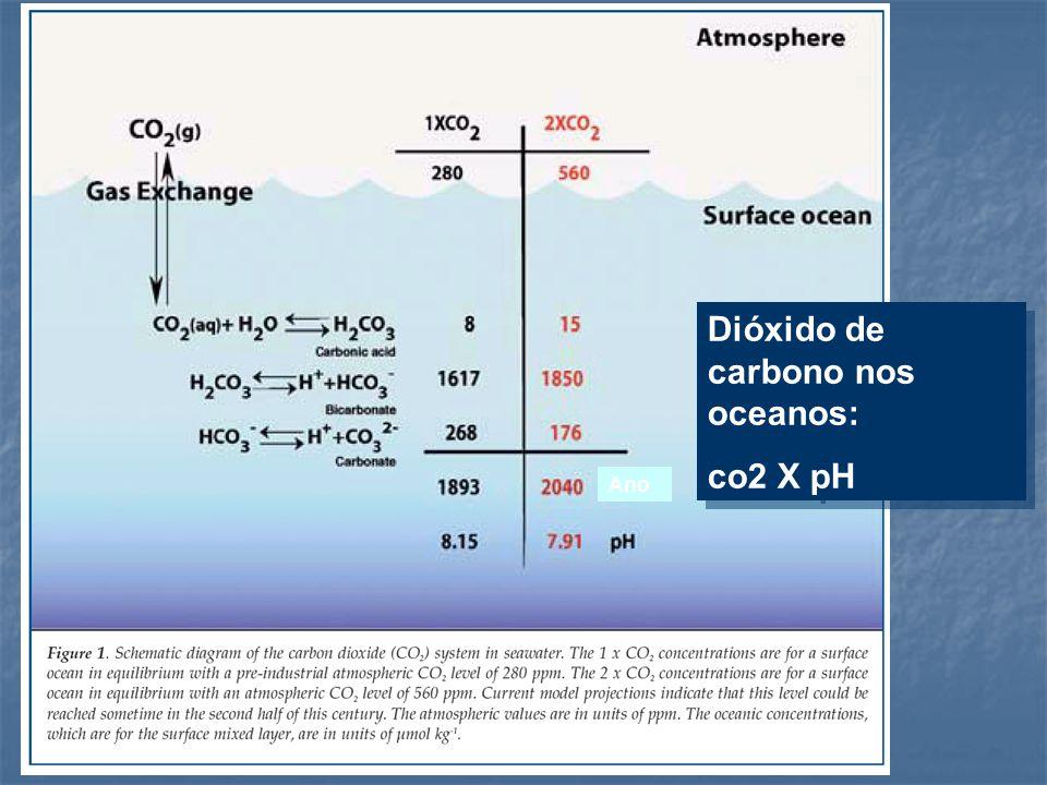Dióxido de carbono nos oceanos: