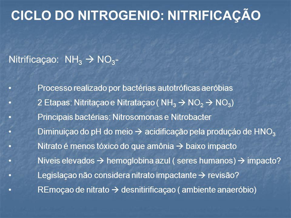 CICLO DO NITROGENIO: NITRIFICAÇÃO
